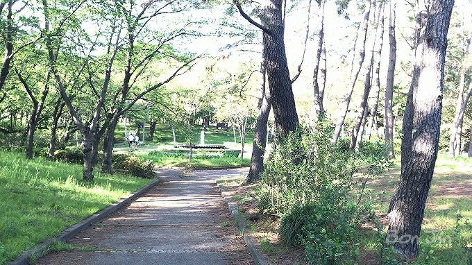 横井山緑地テニスコート(愛知県名古屋市中村区) テニスのBonJin