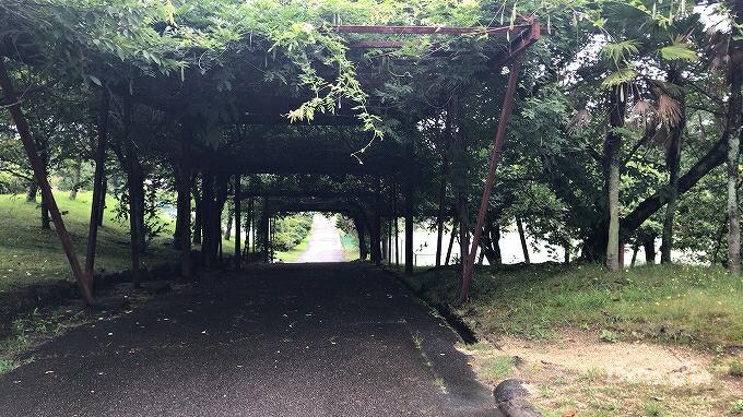 名古屋グリーンテニスクラブ テニスのBonJin